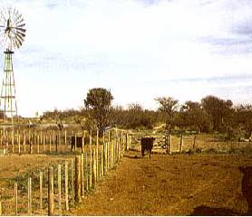 Typical ranch in the pampas